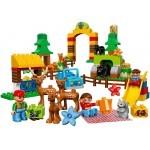 Купить Лего 10584 Лесной заповедник, Дупло.